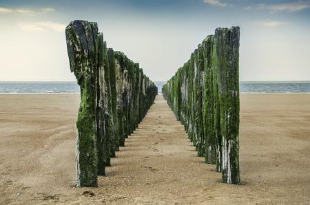 breakwaters: Breakwaters on the North Sea.