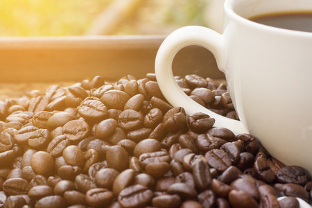 Coffee beans with white coffee mug blur background and light fair , A cup of hot coffee is placed beside the coffee beans with light fair