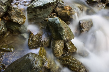 Mountain stream in a forest  photo