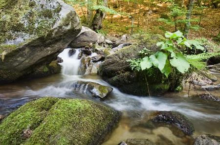 水中における岩石 写真素材