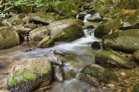 Stream with rocks photo