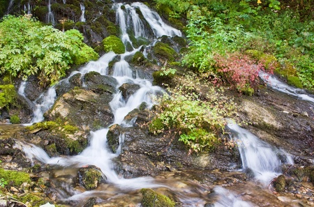 Beautiful cascade falls over rocks  photo
