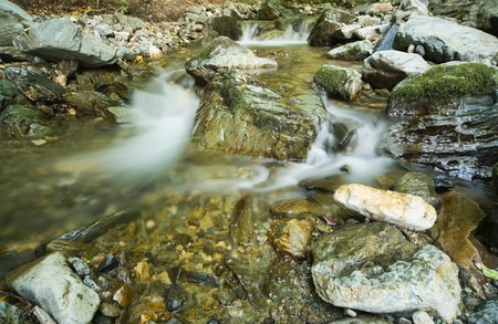 Mountain stream in a forest  Stock Photo - 12881122