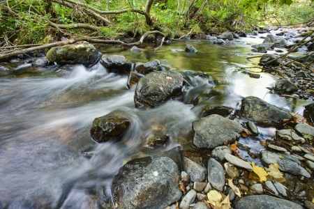 Stream deep in mountain forest  photo