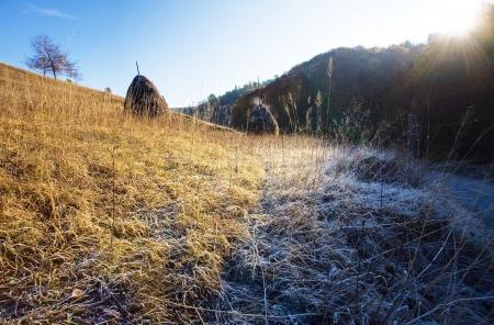 Moring autumn mountain frost