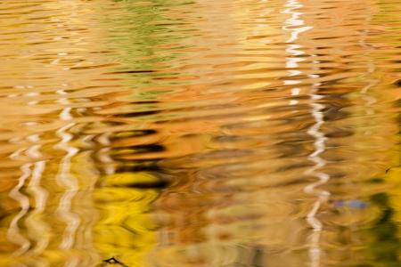 autumn reflected in water  photo