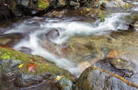 Beautiful creek the autumn Stock Photo