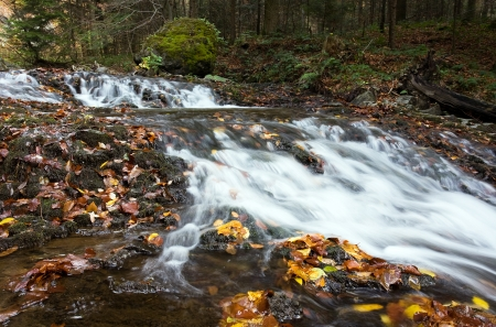 Deep forest Waterfall Autumn photo