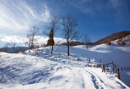 the winter mountains landscape photo