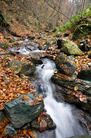 Stream the mountain in autumn photo
