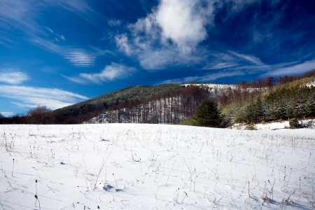Beautiful landscape mountain in winter photo