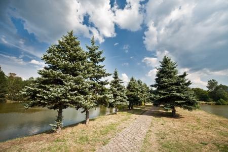 path on the lake