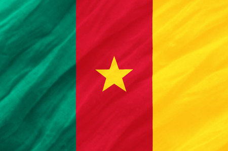 cameroonian: Cameroon national flag