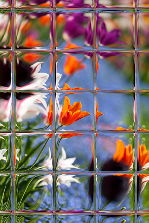 Abstract blurred defocused bokeh background of colorful tulips in garden through window panes Stock Photo