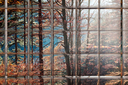 Abstract blurred defocused bokeh background of colorful autumn leaves in forest through window panes Stock Photo
