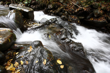 Creek in autumn photo Reklamní fotografie