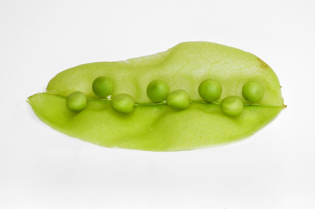 ambrosia: Pisum Sativum Ambrosia - pea peas The pod is intended to be eaten whole pods as well as handling