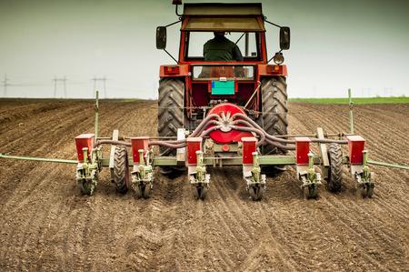 Planting soybean on field