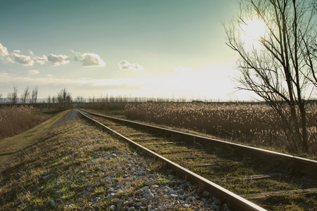 winter time: Landscape at winter time.  Railroad.