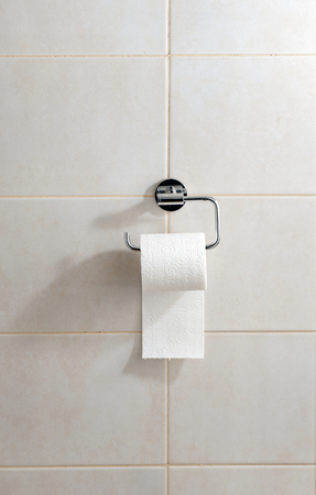 loo: Toilet paper in holder Stock Photo