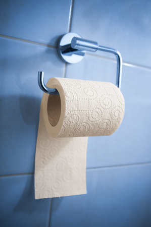 absorbent: Toilet paper in holder Stock Photo