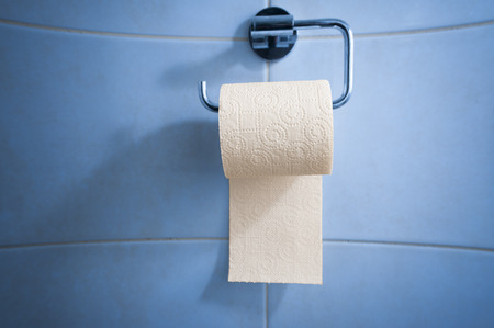 perforated sheet: Toilet paper in holder Stock Photo