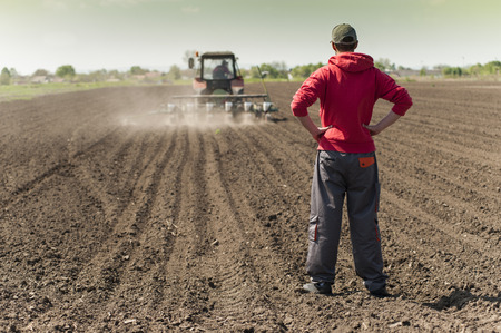 seeding: Planting soybean on field