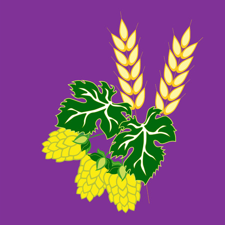 Barley ears and hop cones with leaves. Vector image in the style of flat