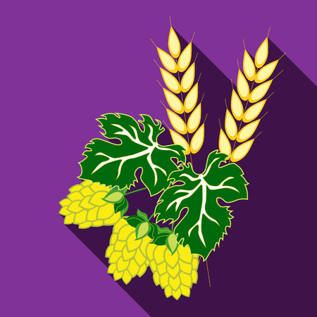 barley hop: Ears of barley and hop cones with leaves. Vector image in flat style with long shadow