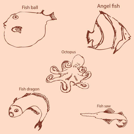 Marine inhabitants with names. Pencil sketch by hand. Vintage colors. Vector image
