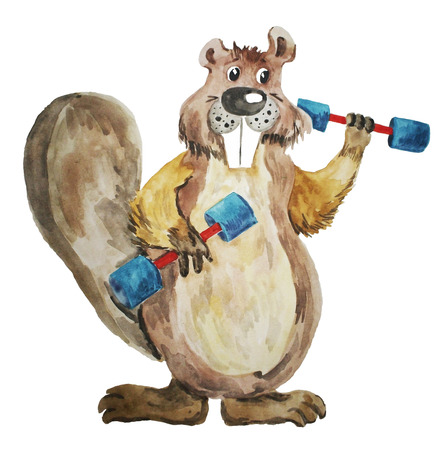 A Beaver with dumbbells. Character in the style of cartoons. Illustration of a watercolor by hand on a white background. Element of design. Vector image.