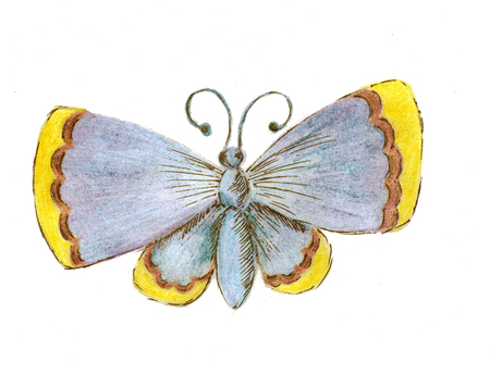 The butterfly is blue with the yellow ends of the wings. Sketch with colored pencils from hand. Raster image