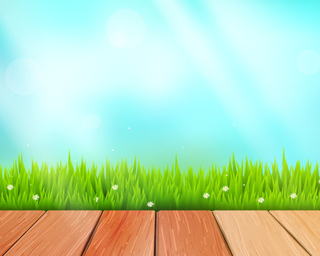 floor plant: Vector rustic wooden planks and grass on blue background
