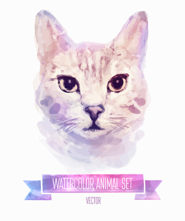 Vector set of watercolor illustrations. Cute cat with big eyes. T-shirt print .