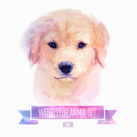 wash painting: Vector set of watercolor illustrations. Cute dog, puppy. Illustration