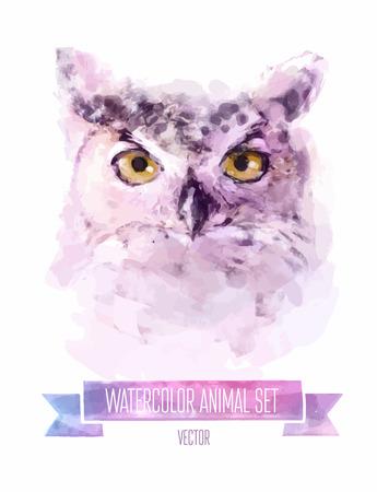 Vector set of watercolor illustrations. Cute owl. Vectores