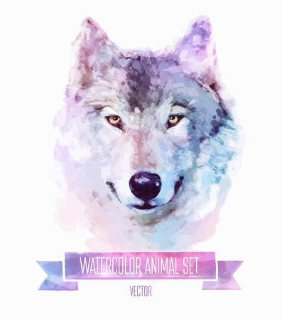 white wolf: Vector set of watercolor illustrations. Cute wolf