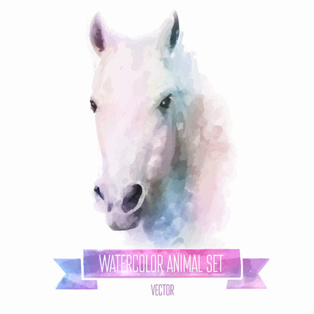 farm animals: Vector set of watercolor illustrations. Cute horse