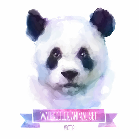 animal texture: Vector set of watercolor illustrations. Cute panda