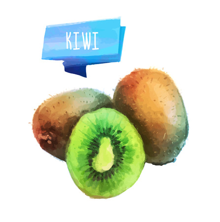 Kiwi hand drawn watercolor, on a white background.