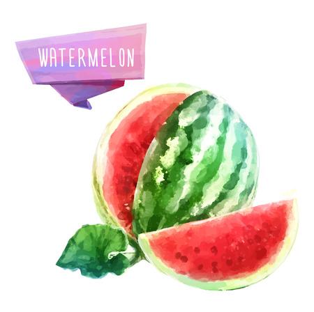Watermeloen hand getekende aquarel, op een witte achtergrond. Stock Illustratie