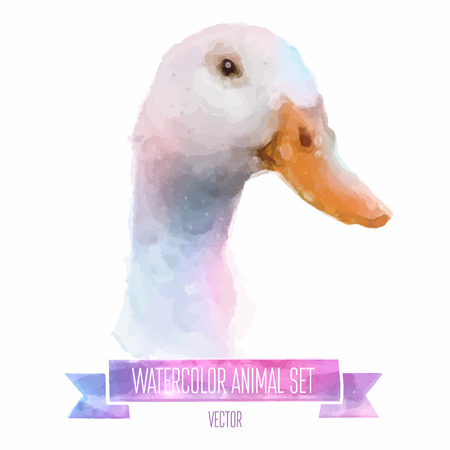 set of watercolor illustrations. Cute duck Illustration