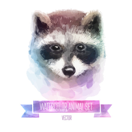 set of watercolor illustrations. Cute raccoon