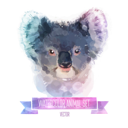 coala: conjunto de ilustraciones de acuarela.