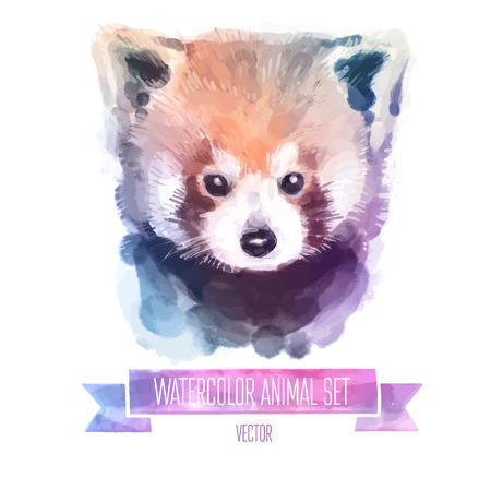 young animal: set of watercolor illustrations. Cute red panda