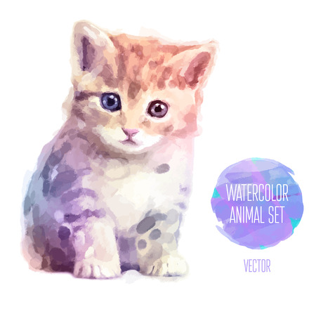 Vector set of watercolor illustrations. Cute cat