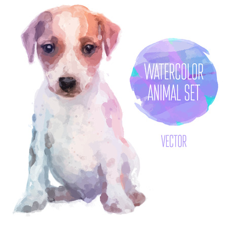 Vector set of watercolor illustrations. Cute jack russel Vettoriali