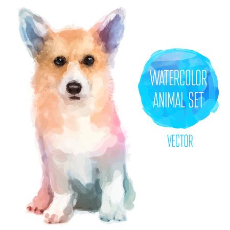 動物: 向量組的水彩插圖。可愛的小狗