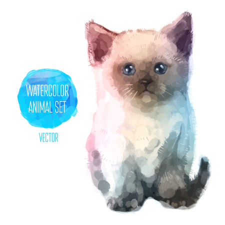 Vector set of watercolor illustrations. Cute cat