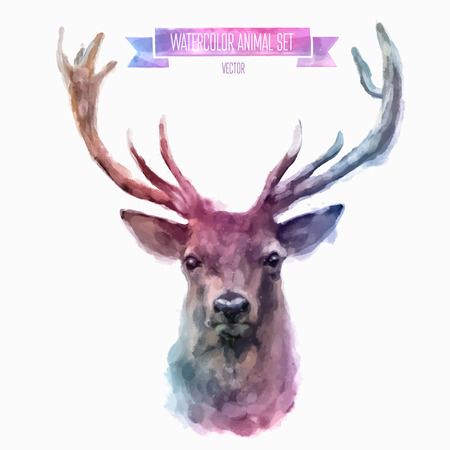 animals in the wild: Vector set of watercolor illustrations. Cute deer